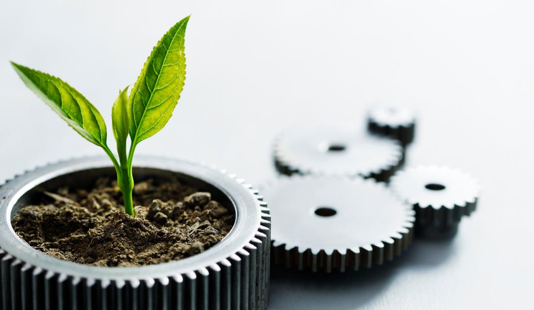 ¿Qué significa ser una imprenta sostenible y responsable?
